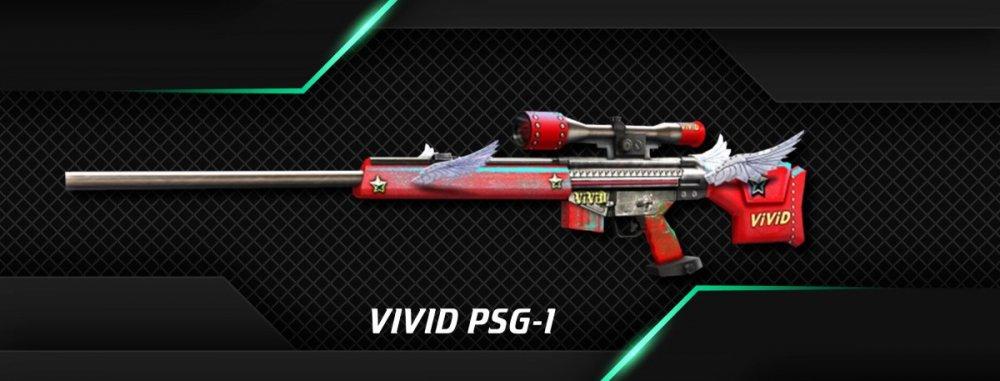 VIVID PSG-1.jpg
